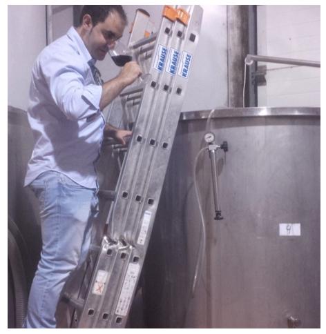 Primeras pruebas de elaboración de OSMO Rioja Crianza.